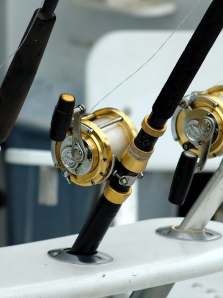 rod-and-reels-1024x681